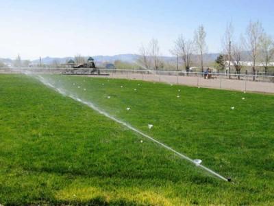 Sprinkler watering grass