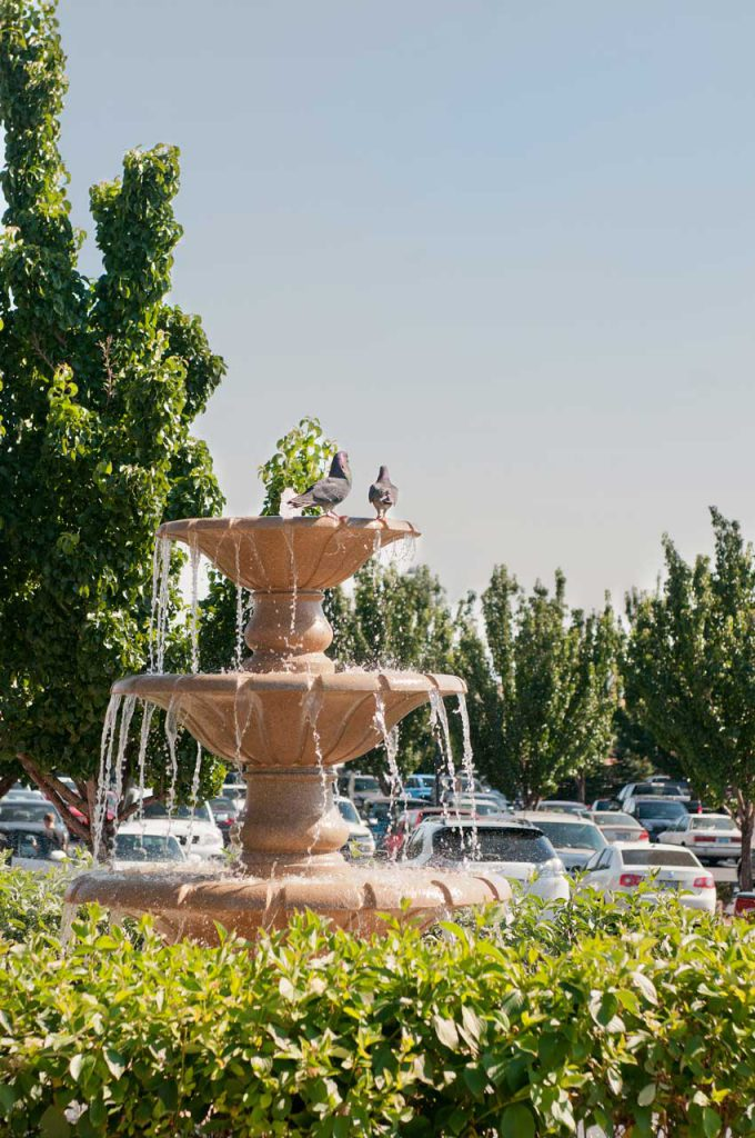 Commercial Landscaping Fountain