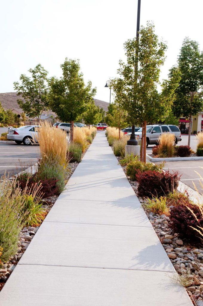 Commercial Landscaping Pioneer Meadows Walkway