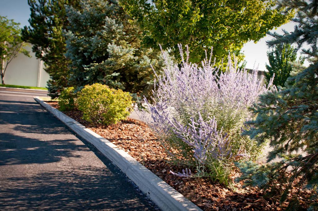 Summit Racing Commercial Landscaping