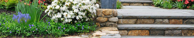 Design installation reno green landscaping for Outdoor design reno
