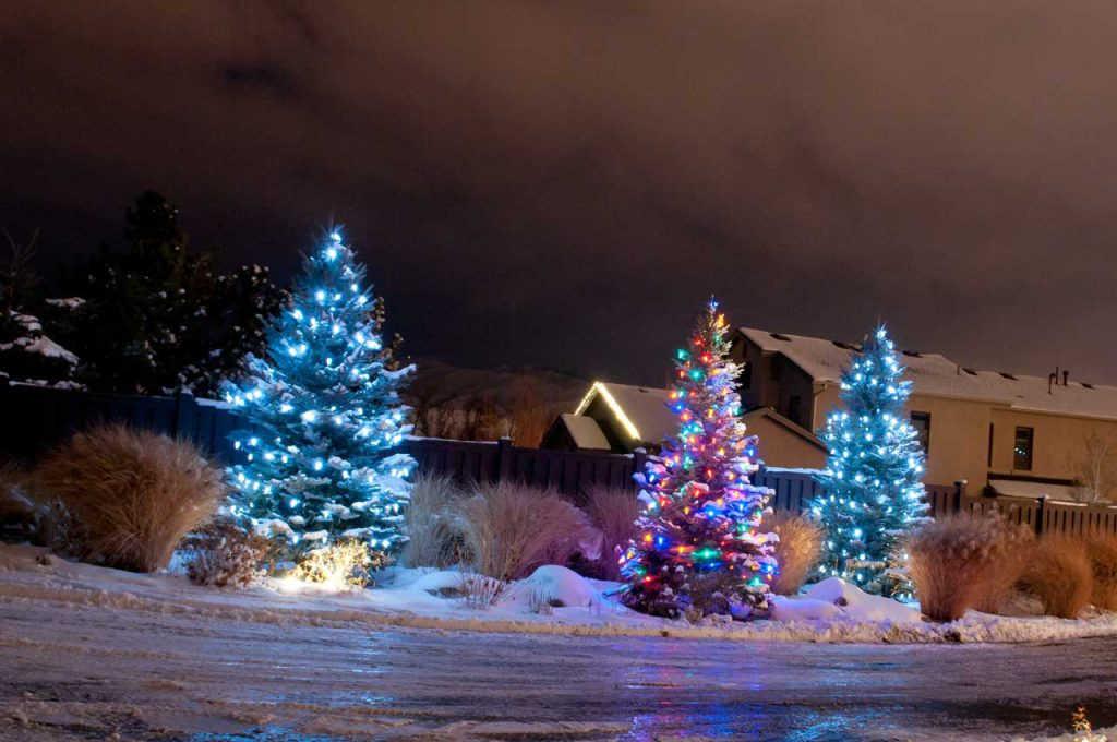 Residential Landscaping Christmas Decorations
