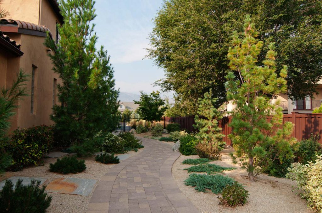Residential Landscaping Side Path