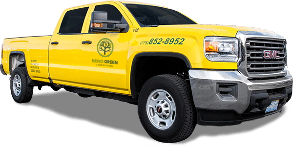 Sign up for our newsletter - Residential & Commercial Landscaping Services Reno Green