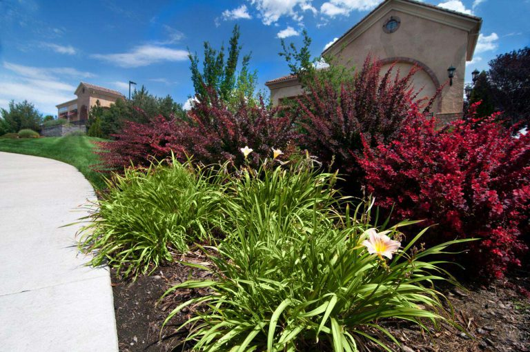 benefits of commercial landscaping