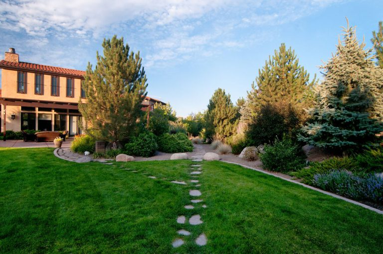Residential Yard Stone Path