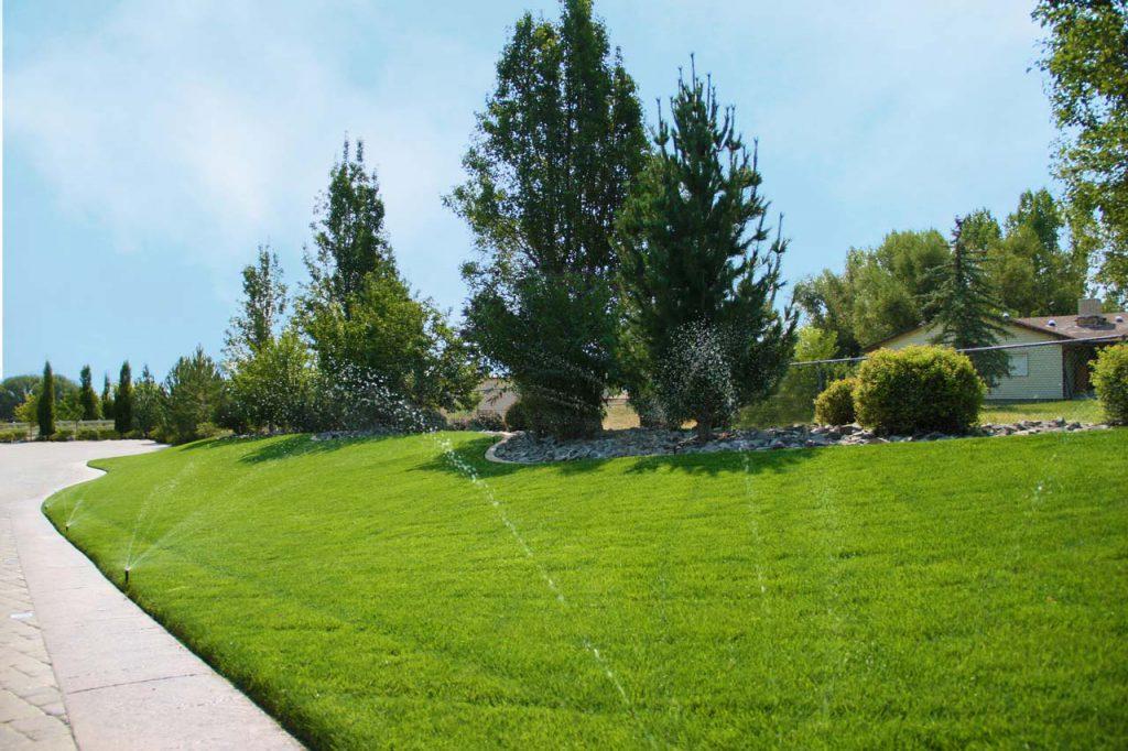 Residential Lawn Watering