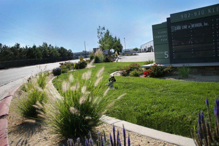 Sierra Complex Entrance Landscape