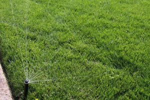 Residential Irrigation and Water Conservation