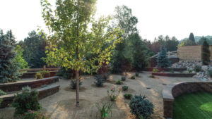landscaping trends from 2018 and what to expect in 2019