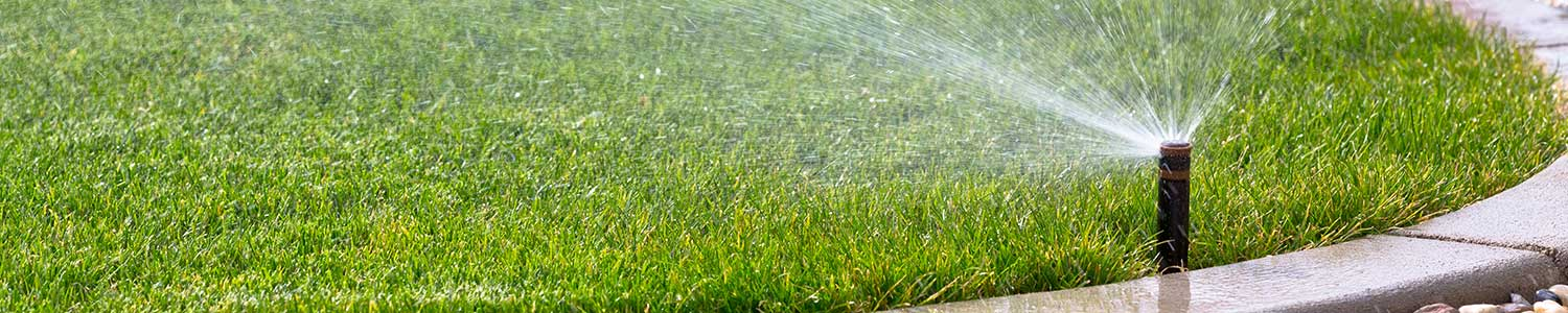 Reno Residential Landscaping Irrigation Services