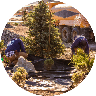 reno landscaping installation for commercial