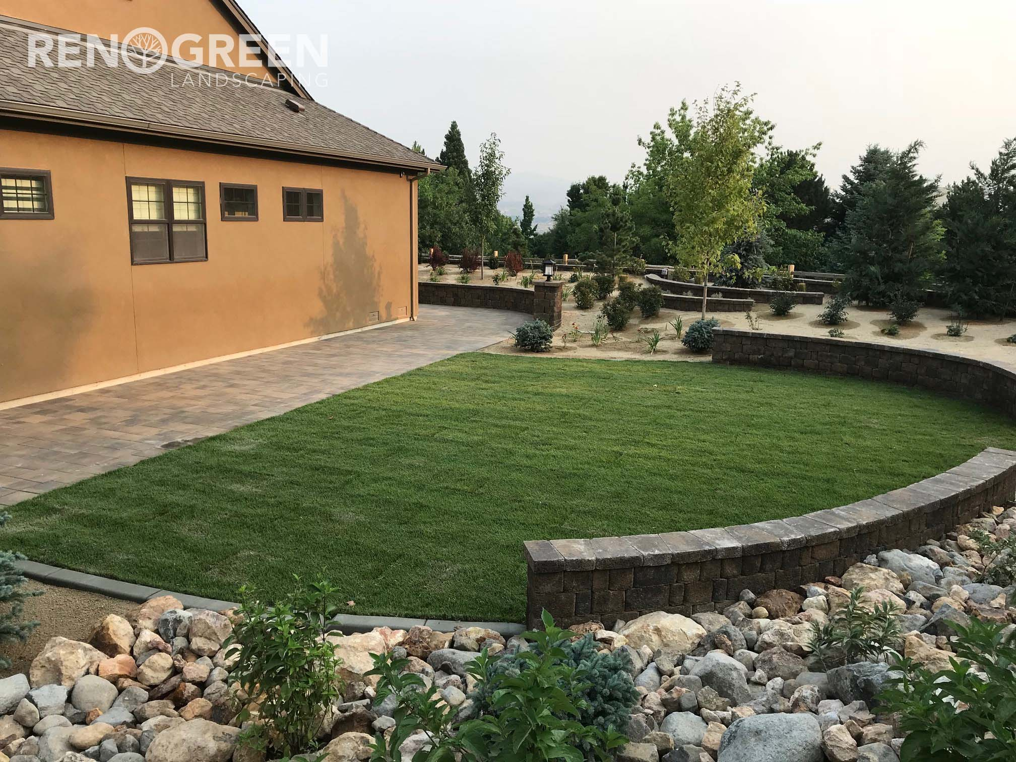 sod backyard