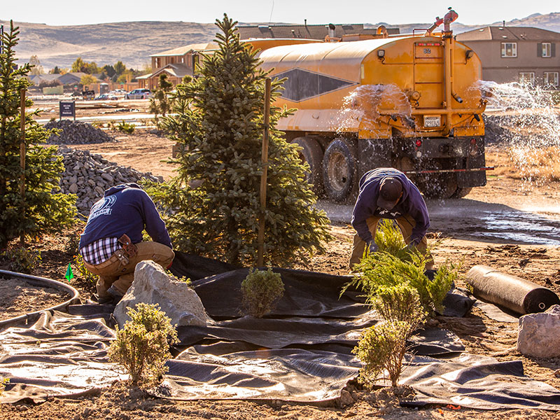 reno landscaping construction services for commercial and residential