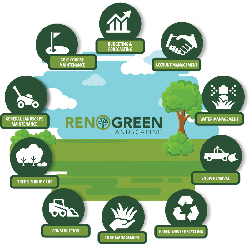 reno green services infographic