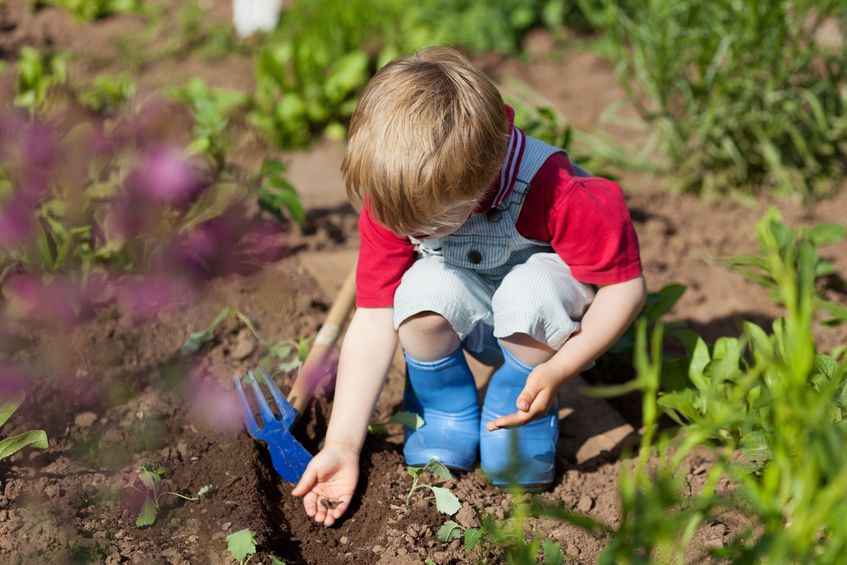 gardening with kids during covid 19
