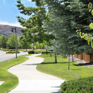 pathway to reno landscape education