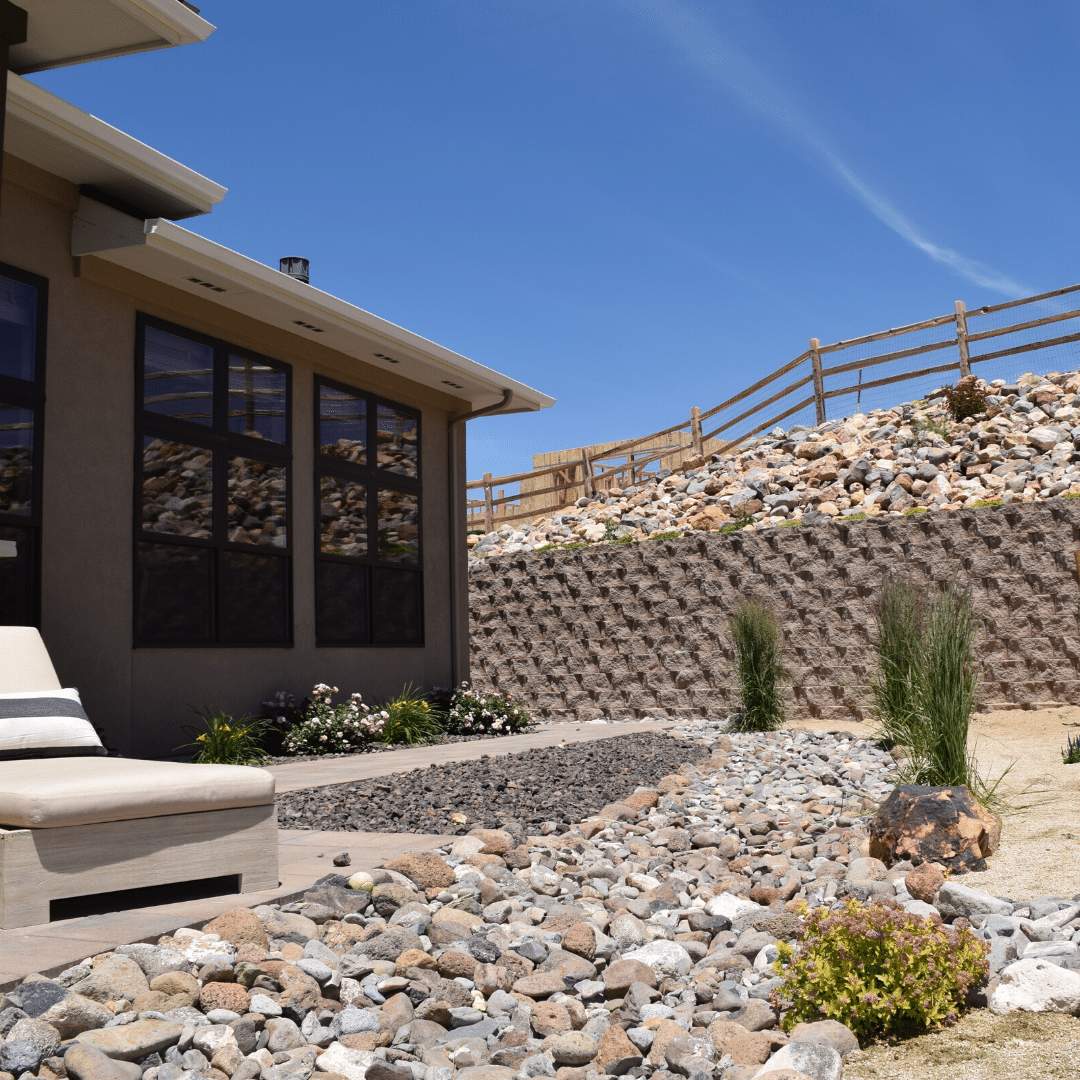 xeriscape landscape backyard