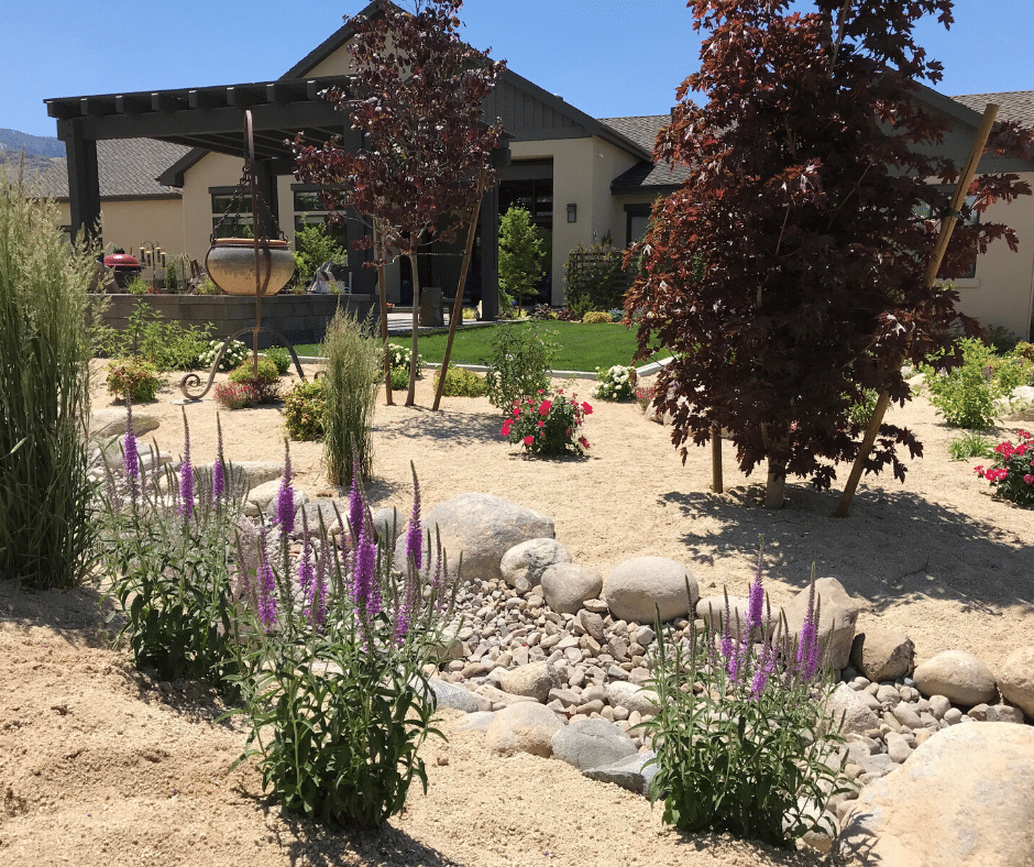 xeriscaping low water use plants
