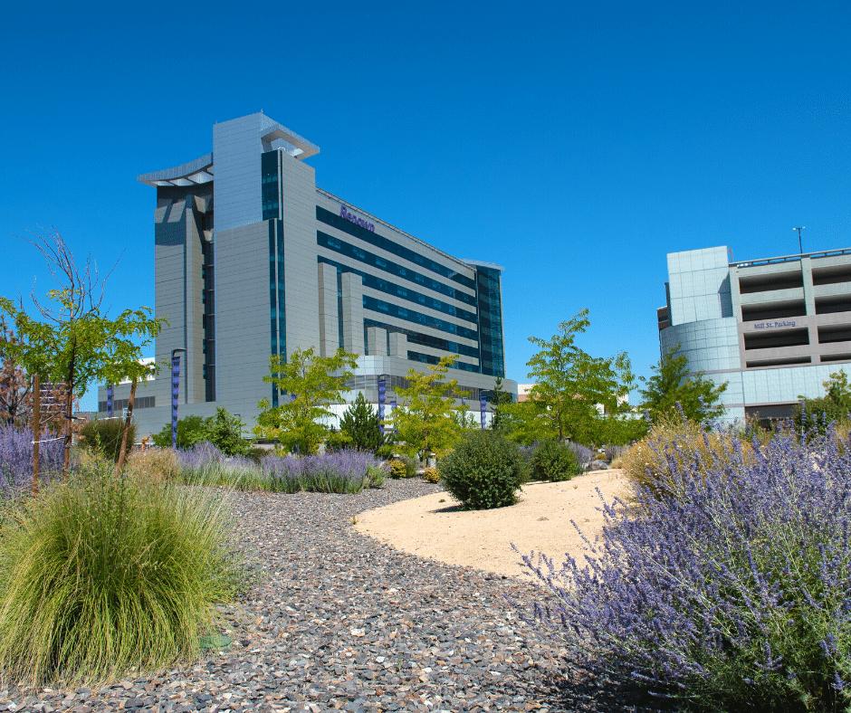 xeriscape landscaping design