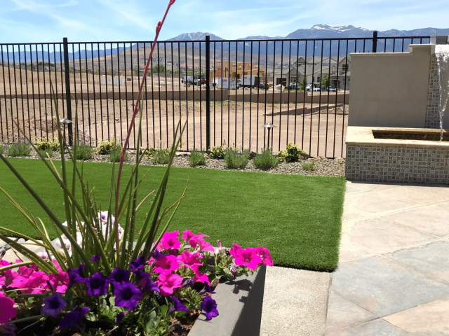 annual plants and artificial turf
