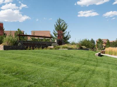 landscape maintenance choosing a landscape provider