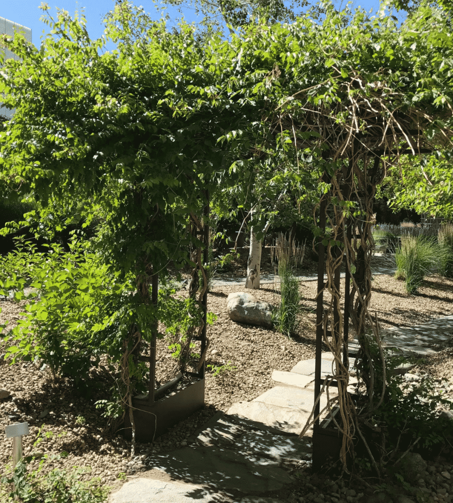 cottage garden trellis
