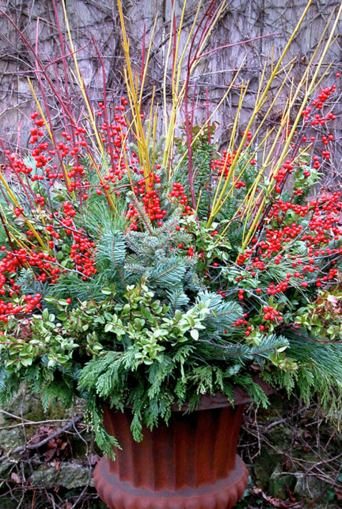 Garden containers for every season winter planting container