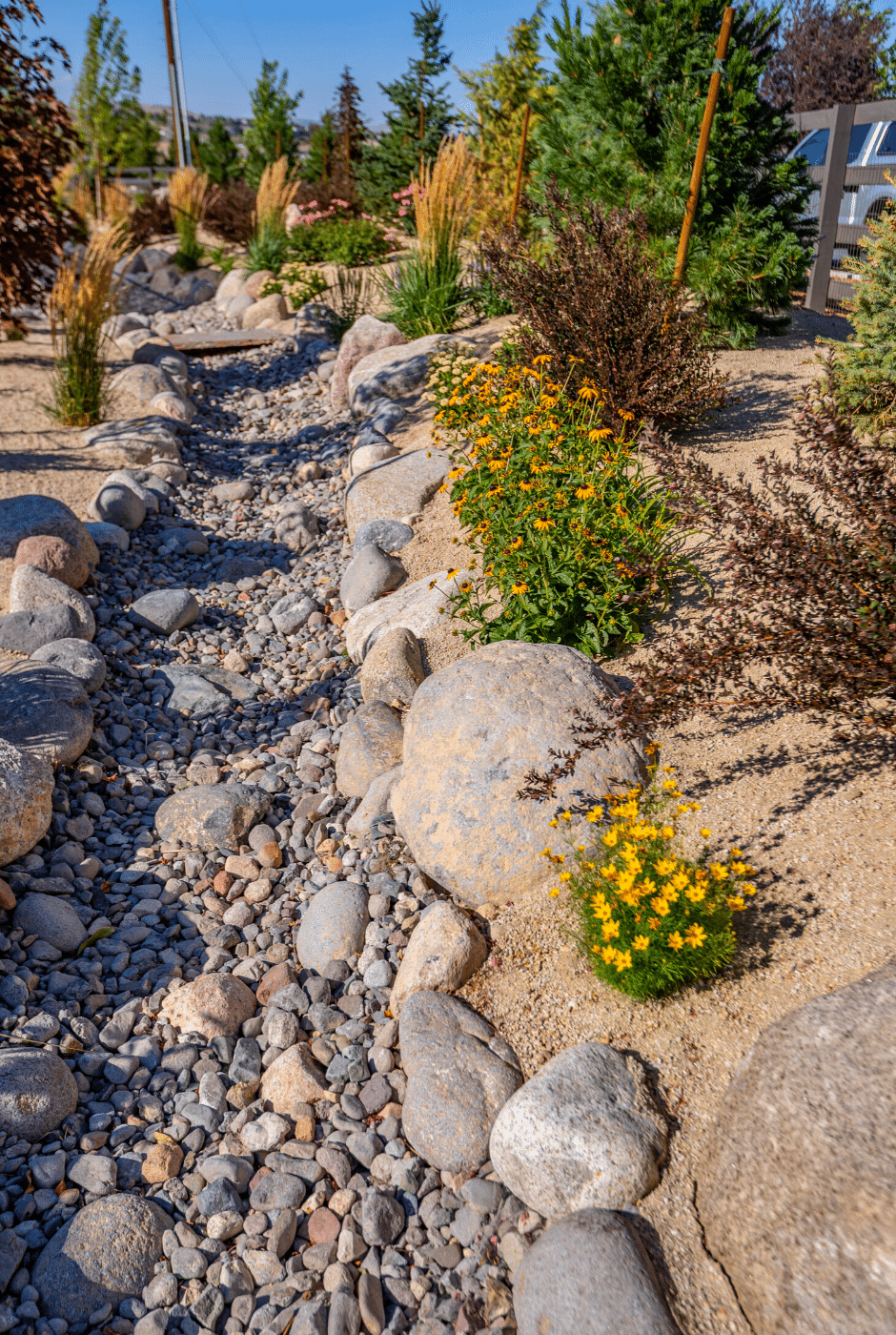 landscape design dry creek bed xeriscaping