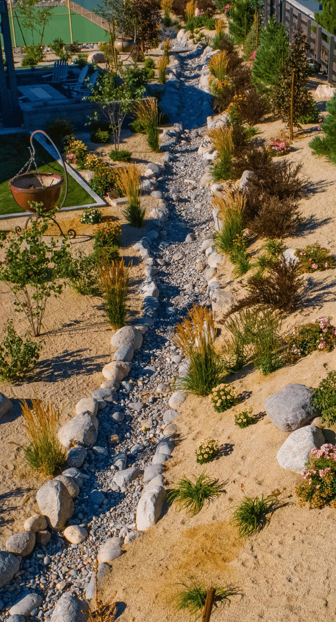 dry creek bed xeriscape