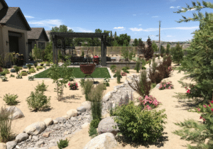 xeriscaping outdoor living