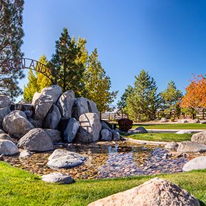 commercial landscape maintenance in reno